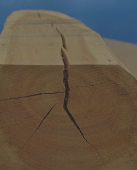 repair cracks